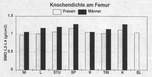 Knochendichte am Femur Diagramm